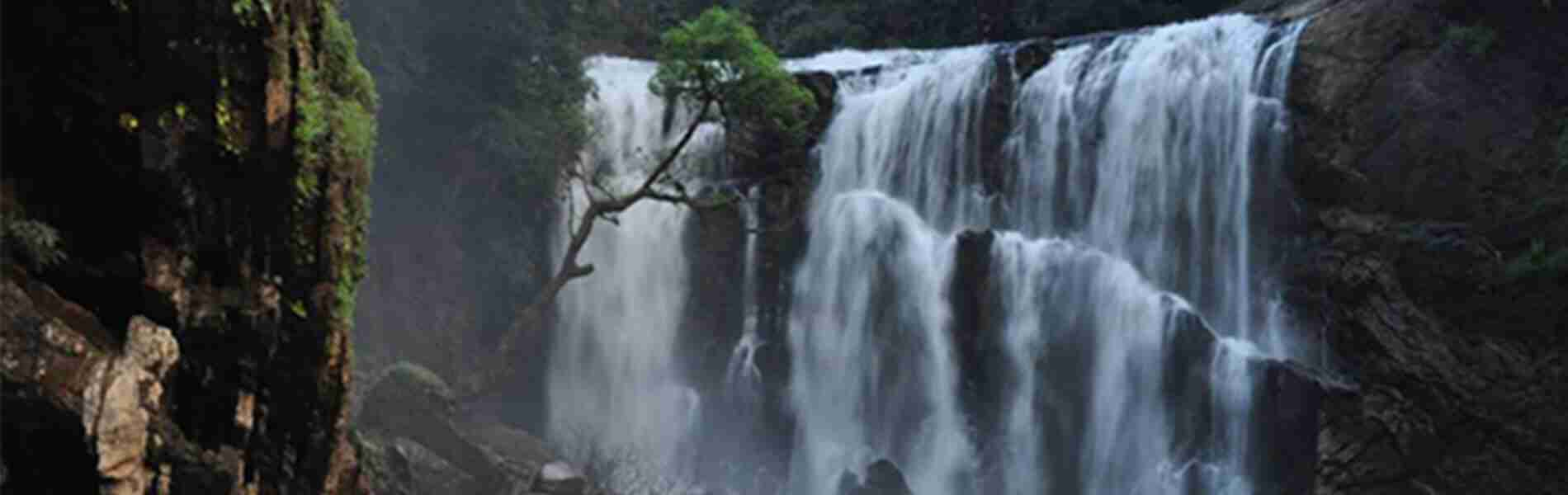 Places to visit around Dandeli